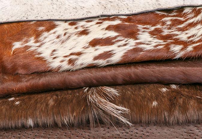 Various animal skins